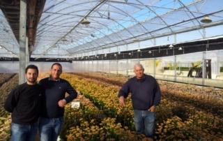 Nuovi orizzonti per la floricoltura: benvenuta kalanchoe