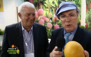 Luca Sardella intervista Uzi Cairo dell'azienda agricola Cairo & Doutcher al Macfrut 2018 riguardo le nuove coltivazioni di mango, avocado e litchi. Estratto del servizio di Pollice Verde andato in onda il 26 maggio 2018